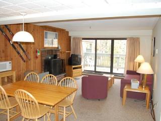 Mountain Green Unit 3-C4 - Killington Area vacation rentals