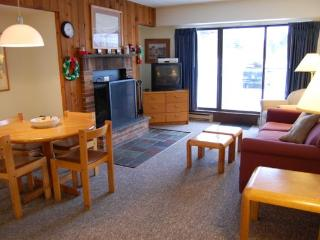 Mountain Green Unit 2-A9 - Killington vacation rentals