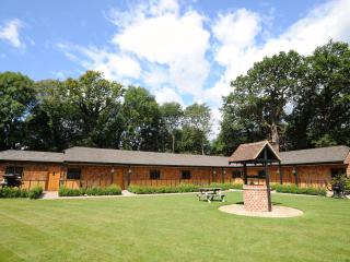 Ash at Hill Top Farm Lodges - Chertsey vacation rentals