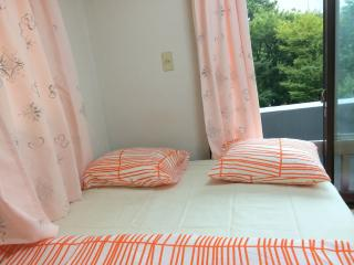 Entire Home in Nishi Azabu - Roppongi - Tokyo vacation rentals
