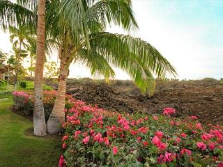 Mauna Lani Palm Villas D1 - Waikoloa vacation rentals