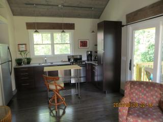 Cozy 1 bedroom Cottage in Asheville - Asheville vacation rentals