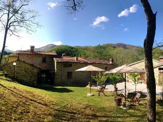 Cozy 2 bedroom Farmhouse Barn in San Godenzo - San Godenzo vacation rentals