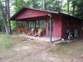 Relaxing Little Manistee River Cabin - Manistee vacation rentals