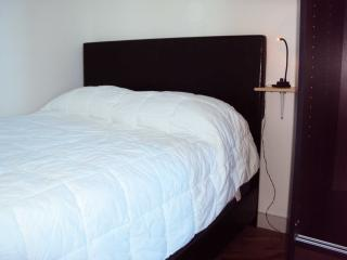 Nice Condo with Deck and Internet Access - Long Island City vacation rentals