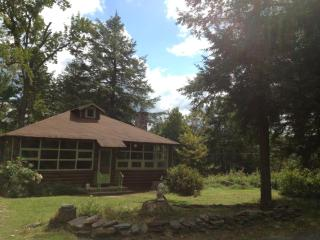 Beautiful Catskills Cabin (private lake community) - Livingston Manor vacation rentals