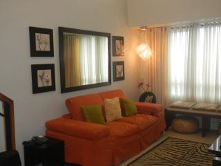 Apartment for Rent Makati-Greenbelt-Fully Furnish - Makati vacation rentals