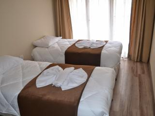 Zeyrek House Istanbul & In the heart of all city - Istanbul vacation rentals