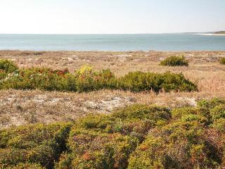 Pelican Watch 1380 - Seabrook Island vacation rentals
