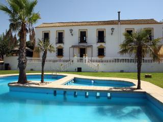 1721 House 10 Min. Sevilla - Alcala de Guadaira vacation rentals