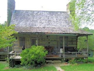 Original log cabin with one upstairs bedroom, fireplace, kitchen - Earlysville vacation rentals