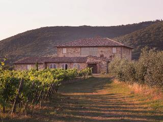 Castelnuovo Berardenga - 63946001 - Castelnuovo Berardenga vacation rentals