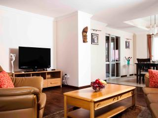 3 Bedroom Serviced Apartments in Kathmandu - Kathmandu vacation rentals