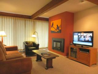 Nice Condo with Television and Microwave - Crested Butte vacation rentals