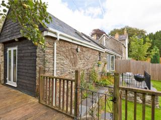 Bright Barn with Deck and Internet Access - Newcastle Emlyn vacation rentals