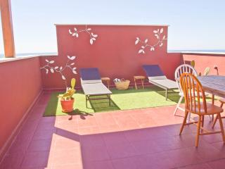 Winter in the sun! private terrace - Malaga City - Malaga vacation rentals