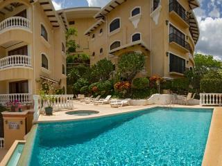 Nice Condo with A/C and Shared Outdoor Pool - Playa Flamingo vacation rentals