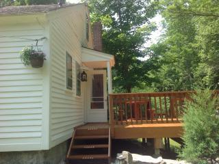 Cozy 3 bedroom Cottage in Pomfret Center - Pomfret Center vacation rentals