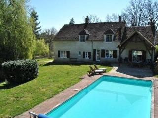 Bright Manor house in Saint-Fargeau with Outdoor Dining Area, sleeps 16 - Saint-Fargeau vacation rentals