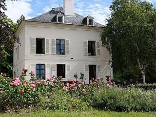 Wonderful 6 bedroom Cottage in Saint-Fargeau - Saint-Fargeau vacation rentals