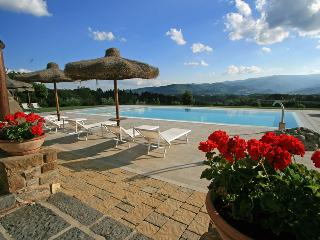 Luxury Villa up to 21 people in panoramic position - Bibbiena vacation rentals