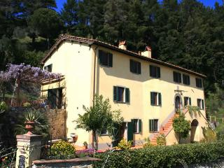Villa Aquilea (antique villa & pool) Lucca Tuscany - Lucca vacation rentals