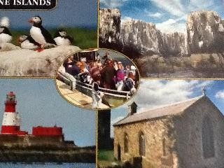 BERWICK UPON TWEED. on the border of England & Scotland. - Berwick upon Tweed vacation rentals