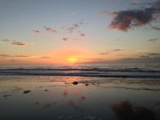 Beach Lover's Retreat for Family & Pet Owner - Hilton Head vacation rentals