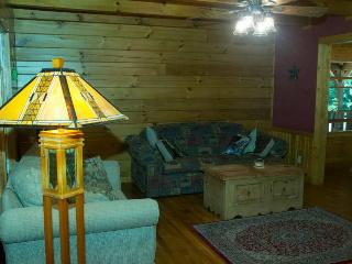 Visit a great family hideaway Close to the Blue Ridge Parkway, Lake Lure, Asheville !!! - Marion vacation rentals