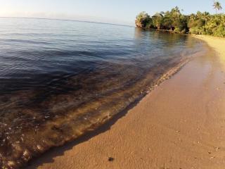 Vosa Ni Ua  Lodge offers Thangi Vulle. Beach side. - Fiji vacation rentals