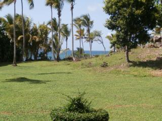 3 min. walk to beach. Ocean view. Sleeps 4. WiFi. - Las Galeras vacation rentals