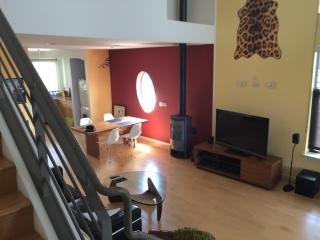 Furnished two level-penthouse loft - Emeryville vacation rentals