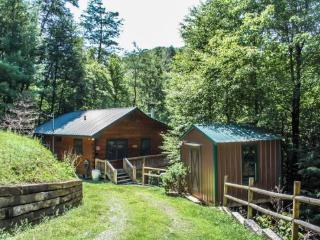TUCKED AWAY- 2BR/1BA WOODED CABIN~ CLOSE TO TOWN~ WOODBURNING FIREPLACE~ CABLE TV~PET FRIENDLY~ ONLY $85/NIGHT! - Blue Ridge vacation rentals