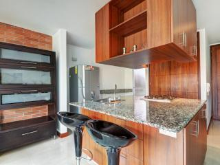 1 Bedroom Apartment in the Center of El Poblado - Medellin vacation rentals