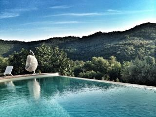 Fonte Cicerum stone villa with eco infinity pool - Paciano vacation rentals