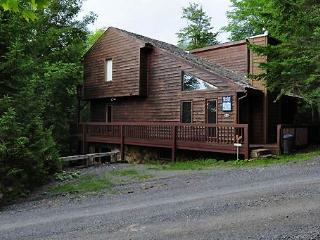NF 17 -  293 Brookside Rd - Canaan Valley vacation rentals