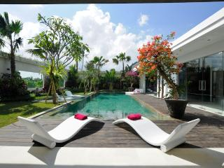 Bali Seminyak luxurious and peaceful villa with view on the ricefied - Seminyak vacation rentals