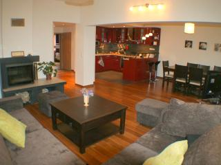 Large luxe flat in City Center - Vrabtsite vacation rentals