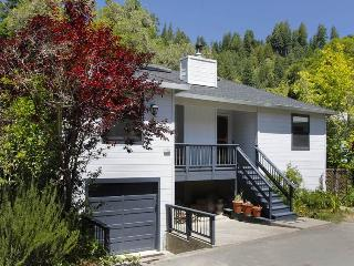 Nice 3 bedroom House in Guerneville - Guerneville vacation rentals