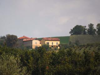 Monferrato: Apartment in a converted farmhouse - Grazzano Badoglio vacation rentals