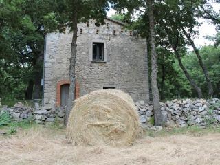 B&B  Difenza Cappella, San Giuliano del Sannio - San Giuliano del Sannio vacation rentals