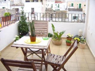 Roof top apartment ibiza - Cala Carbo vacation rentals
