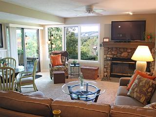 Trout Creek Condo Vacation Rentals - Harbor Springs - Northwest Michigan vacation rentals