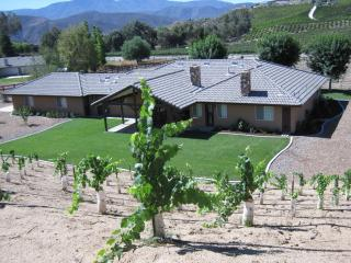 Rancho Del Vino Estate Temecula Wine Country - Temecula vacation rentals