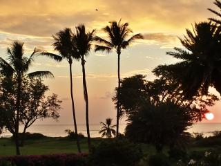 Breathtaking clear ocean view, incredible value - Kihei vacation rentals