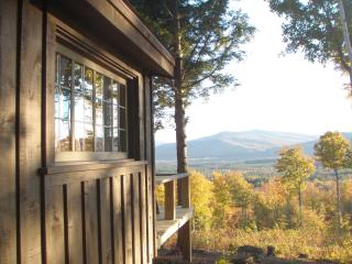Secluded rustic cabin on 70 acres- mountain views! - Andover vacation rentals