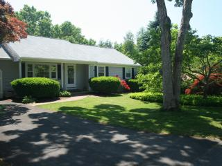 Sun all Day........Fun all night & Pet friendly - Yarmouth Port vacation rentals