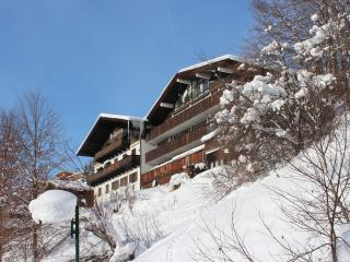 Nice Condo with Internet Access and Television - Saalbach vacation rentals