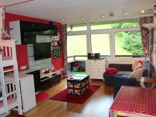 Romantic Condo with Balcony and DVD Player in Saalbach - Saalbach vacation rentals
