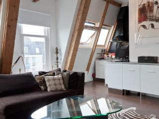 Stylish central loft with large terrace, fireplace. - Amsterdam vacation rentals